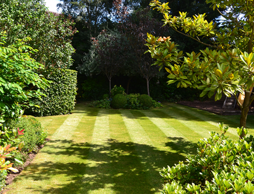 Garden Design Jobs Gloucestershire izvipicom