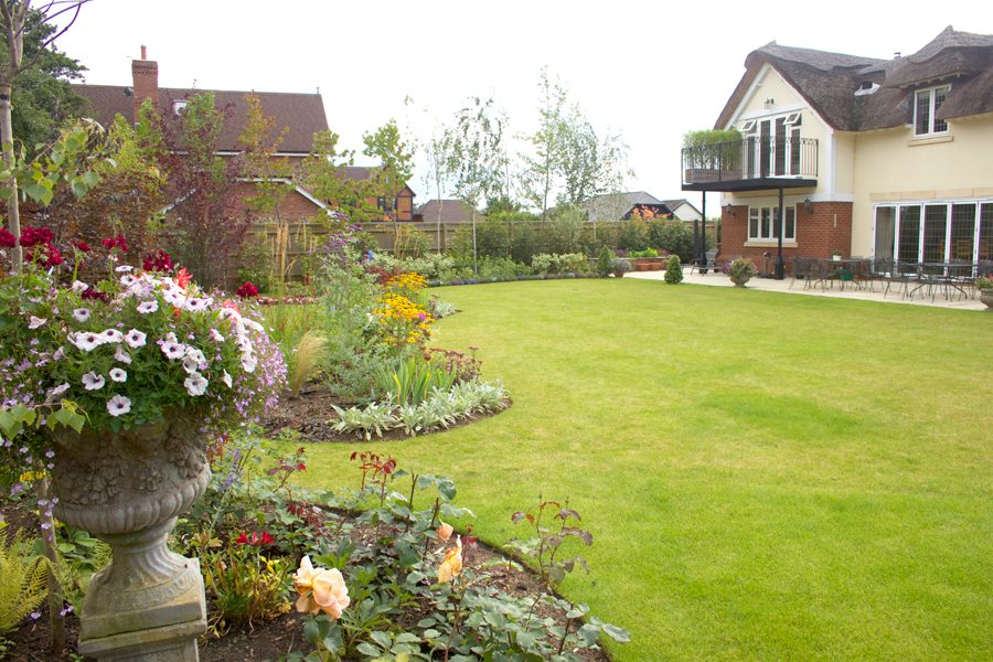 Things to do in the July garden - Oxford Garden Design