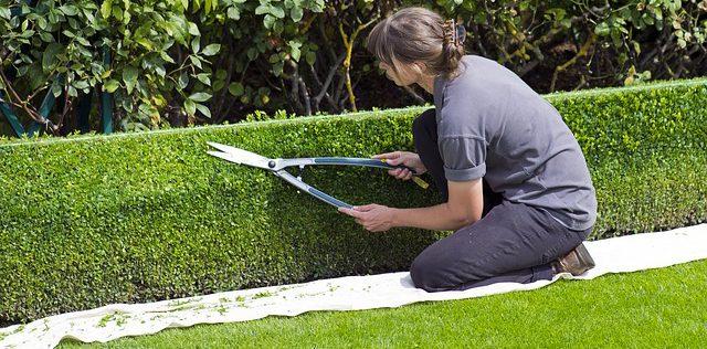 Garden Maintenance in Oxfordshire, oxford garden design