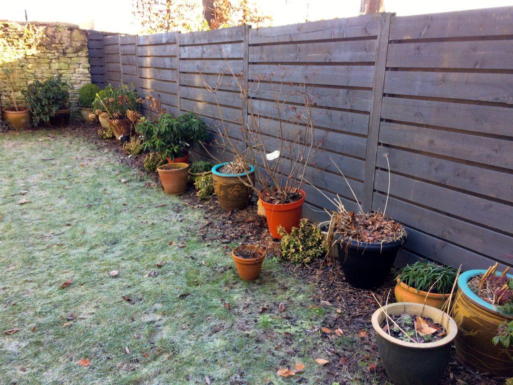 Small Town Garden Design - Oxford Garden Design