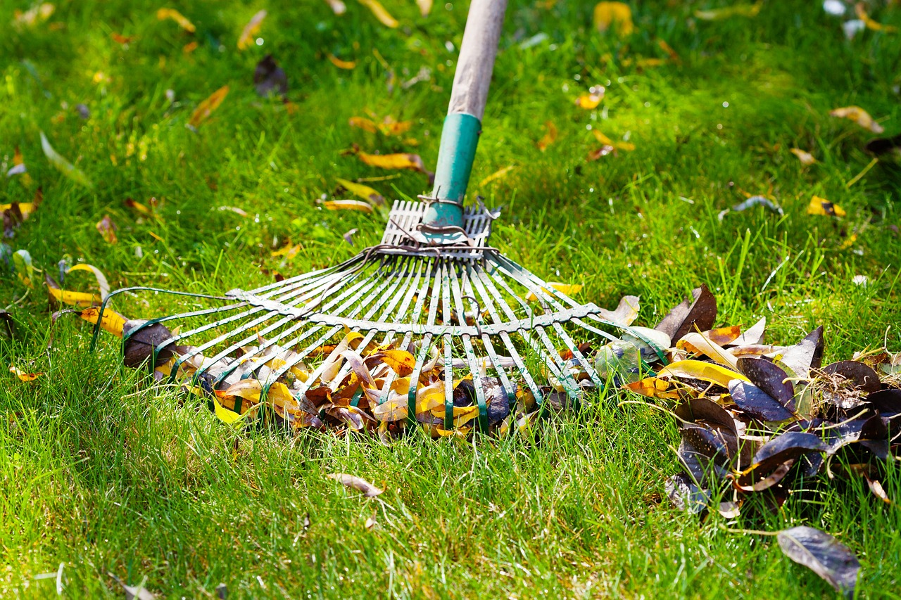 Lawn care spring - garden maintenance Oxfordshire