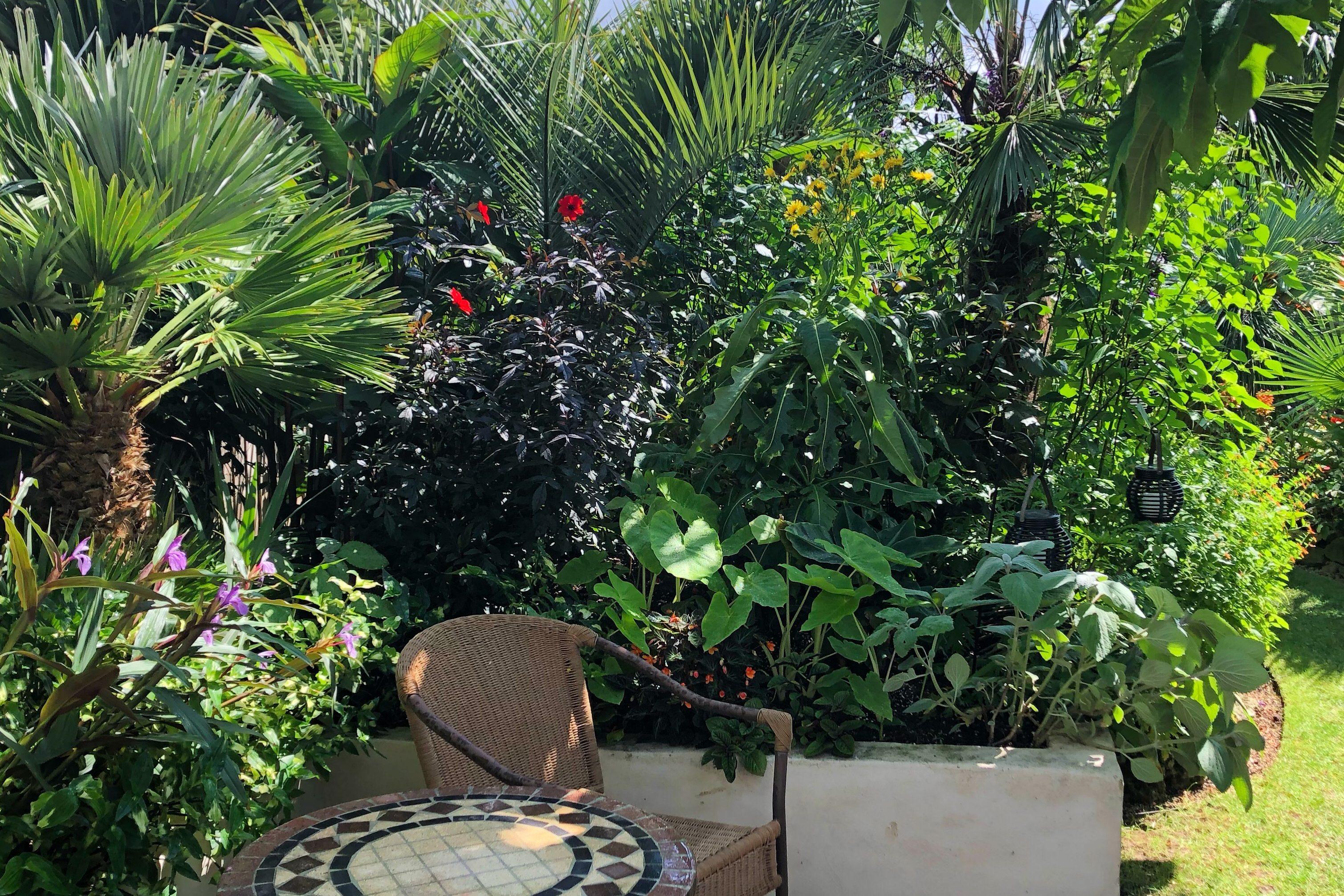 A Tropical Paradise In Abingdon Oxford Garden Design