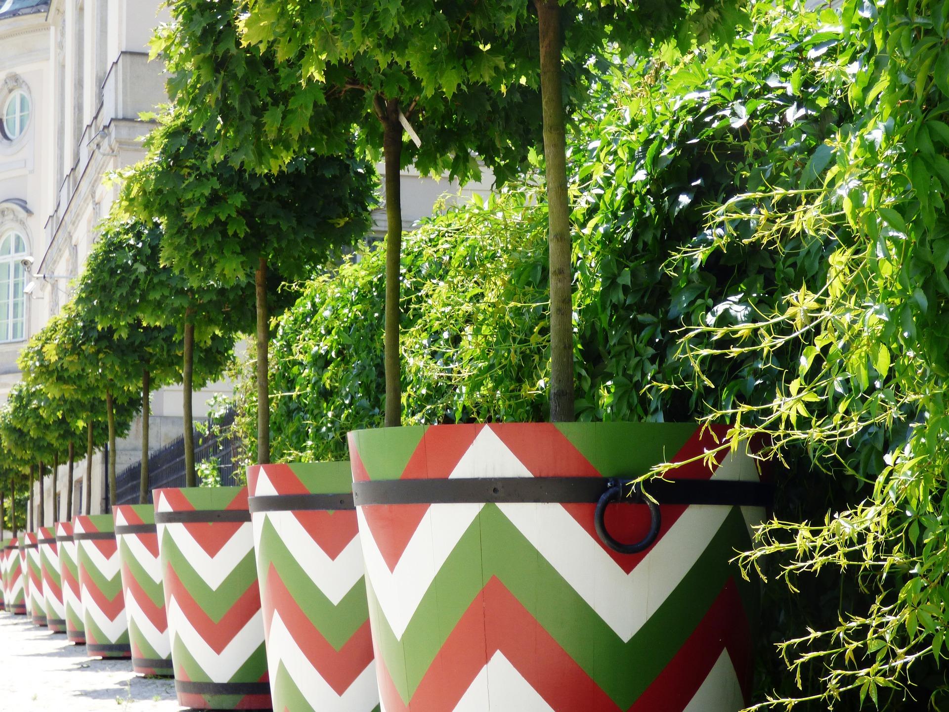 Jobs to do in your garden in September - Oxford Garden Design