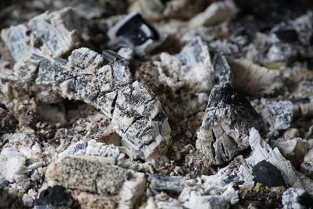 Sustainable gardening wood ash