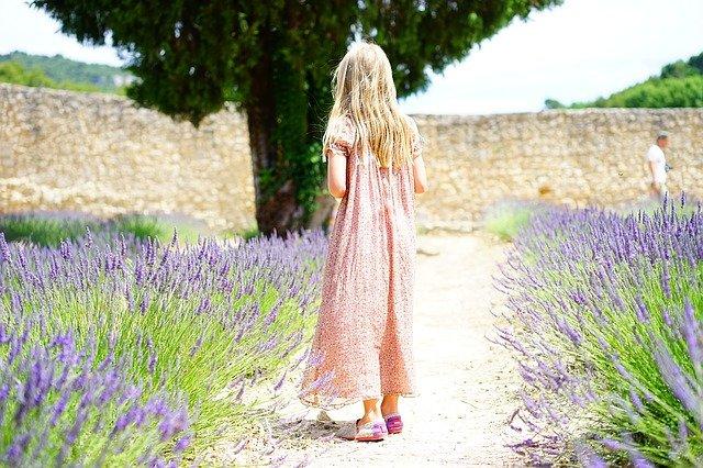 Lavender for honey bees